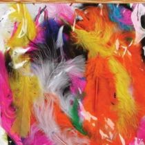 Multicolored Mix Fluff Feathers
