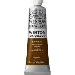 Winsor & Newton Winton Oil Color Burnt Umber 37ml Tube