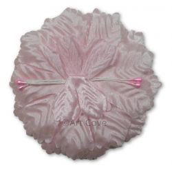 Pink Capia Flowers Flat Carnation Capia Base