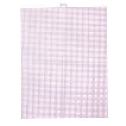 pink plastic canvas
