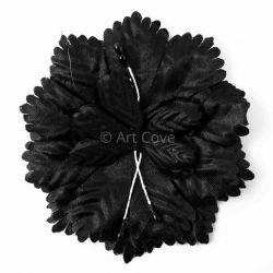 Black Capia Flowers Flat Carnation Capia Base