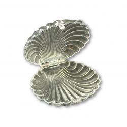 Clear Plastic Seashell Clam Shell Party Favors