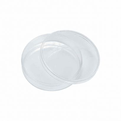 Small Clear Round Plastic Favor Container Box