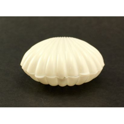 3.5 Inch White Plastic Claim Shell Party Favor Box